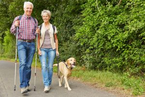 happy senior couple hiking with labrador retriever dog in summer